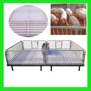 Piglet Bed/Piglet Nursery Bed/Nursery Bed/ pictures & photos