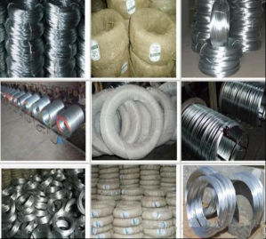 16gauge Galvanized Wire Soft/Gi Binding Wire for Contruction pictures & photos