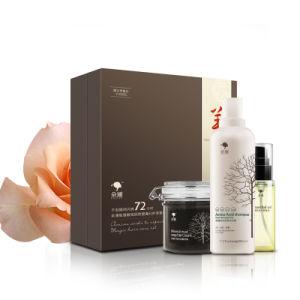 MSDS Natural Herbal Refreshing Soothing Organic Salon Hair Shampoo Brands