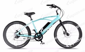 Beach Cruiser Electric Pedal Assisted Bicycle Torque Sensor Portable Lithium Battery (OC) pictures & photos