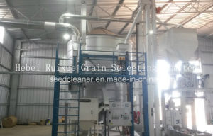 Quinoa Seed Cleaning and Processing Plant (5X) pictures & photos