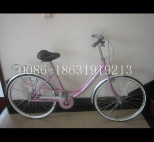 Steel Lady Bike City Bicycle 26 Inches (HC-LD-2695) pictures & photos