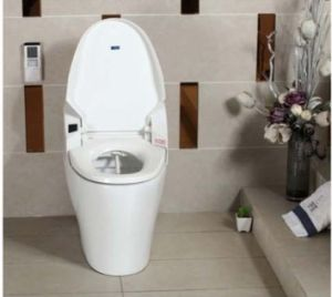 PP/Ceramic Boday Intelligent Toilet (W1508) pictures & photos