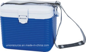 Cooler Box Capacity: 8L (CCC00006) pictures & photos
