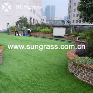25mm Landscape Garden Synthetic Lawn (SUNQ-HY00071) pictures & photos