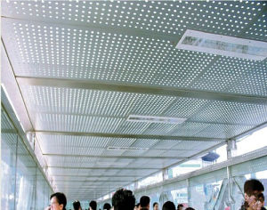 Ss304 Perforated Metal Plates/Perforated Metal Mesh/Perforated Metal Sheets (XM-04) pictures & photos