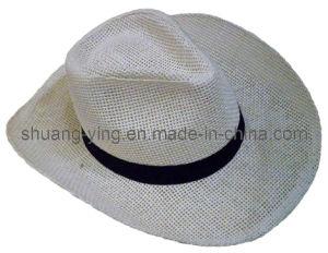 Paper Straw Hat (ZCN12004)