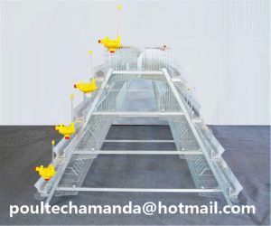 Poultry Farm Cage Coop for Broiler Chicken and Meat Chicken Cage pictures & photos