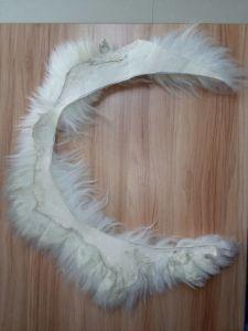 Real Australian Long Wool Sheepskin Fuzzy Scrap pictures & photos