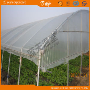 High Quality Arch Greenhouse for Planting Celery pictures & photos