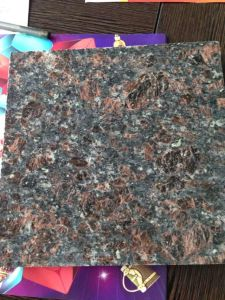 Nice Quality Natural Tan Brown Granite Slab pictures & photos