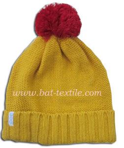 Fashion Hat Bat-H012 pictures & photos