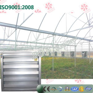 Cooling Fan for Poultry Houses and Greenhouse
