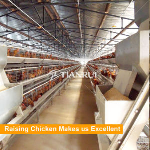 Design Automatic A Type Chicken Egg Layer Cages for sale pictures & photos