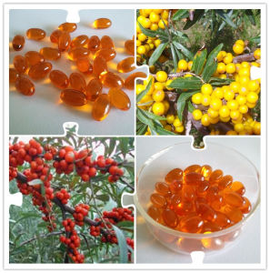 100% Natural and High Quality Pure Sea Buckthorn Seed Oil pictures & photos