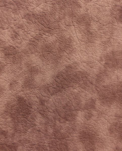 Emboss Design Leather 013