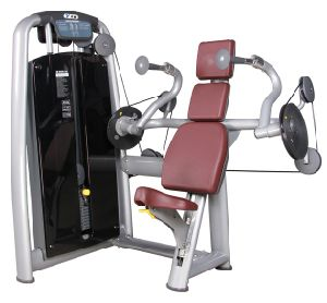 Hot Sale Tz-6011 Gym Use Gym Equipment Triceps Extension 2017 pictures & photos