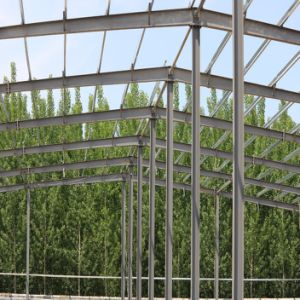 Steel Structure Warehouse with Galvanized Purlin pictures & photos