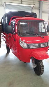 Large Power Tricycle with 800cc Big Engine pictures & photos