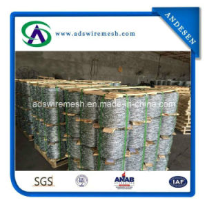 Hot Sale! Hot DIP/ Electric Galvanized Double Twist Barbed Wire pictures & photos
