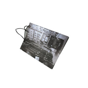 Custom Paper Carrier Shopping Bag pictures & photos