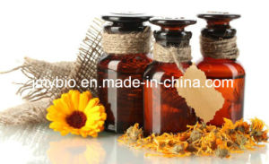100% Pure Chamomile Flower Essential Oil for Skin Care pictures & photos