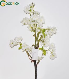 Wholesale Cherry Blossom Flower pictures & photos
