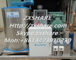 3t/D Flake Ice Maker Machine with Germany Bitzer Compressor
