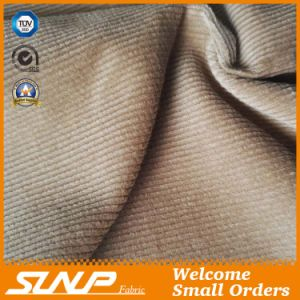 Corduroy Fabric Made of 100% Cotton for Pant and Coat