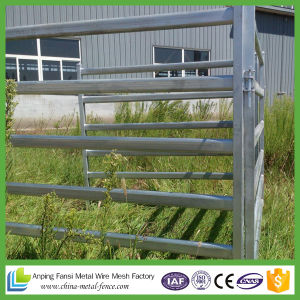 Anping Cheap 5 Bar Cattle Corral Yard Panels for Sale pictures & photos