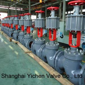 Globe Typepneumatic Cylindersleeve Control Valve pictures & photos