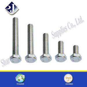 DIN Standard Bolt (nut DIN933 931) pictures & photos
