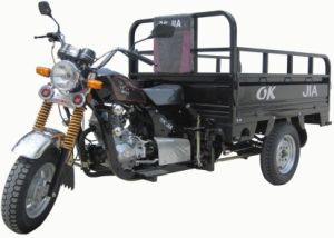 Popular Model Rickshaw for Adult (OKJ150ZH-3)