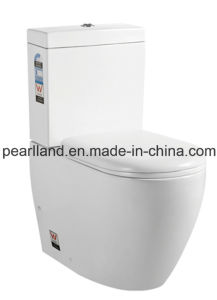 Watermark Washdown Close Coupled Toilet (CE-AZ6010) pictures & photos