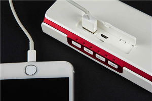 3 in 1 Bluetooth Speaker Power Bank pictures & photos