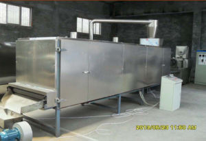 Hot Selling High Capacity Tunnel Box Type Extrusion Food Dryer pictures & photos