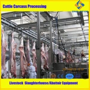 Slaughterhouse Cattle Slaughter Equipment pictures & photos