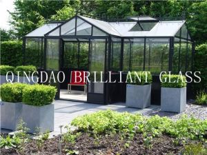 (Asnzs & ISO Certificate) 4-12mm Tempered Glass for Greenhouse, Sunroom