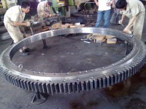 Wind Power Gear/Large Ring/Ring Gear (E-5601) pictures & photos