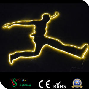 LED Outdoor Christmas Lighting Decoration pictures & photos
