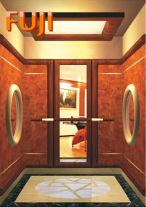 Villa Elevator / Lift with Mirror pictures & photos