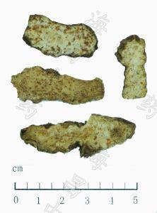 Atractylodes Rhizome/Rhizoma Atractylodis