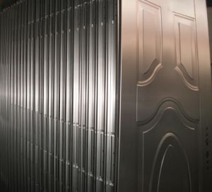 Top Quality Copper Color Steel Doors (SC-S072) pictures & photos