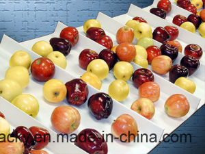 White Food Grade PU Conveyor Belt with Cleat pictures & photos