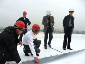 Sheets Roofing for Construction / Homogeneous Tpo Waterproof Membrane pictures & photos