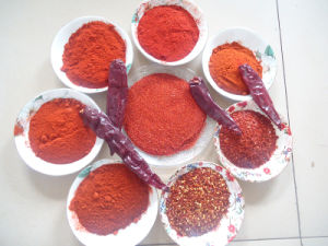 Red Paprika Powder pictures & photos