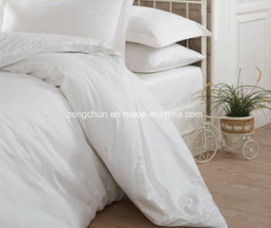 Hite 200tc Capsule Hotel Motel Bedding Plain Bed Sheet Sets pictures & photos