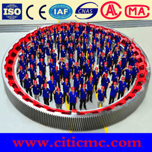 Metallurgy Rotary Kiln Parts Girth Gear for Citic IC pictures & photos