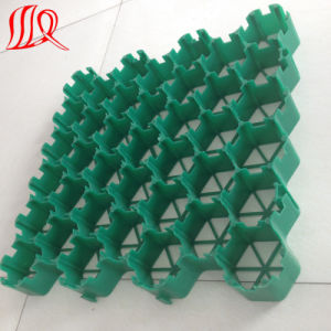 Plastic Grass Paver Grid for Parking Lot pictures & photos