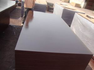 Imported Dynea Brown Film Faced Plywood/Building Material/Plywood/Wood